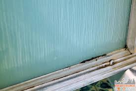 spray nine challenge moldy soap scum mildew covered shower door