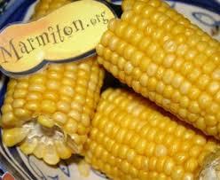 cuisiner des epis de mais epis de maïs au micro ondes recette de epis de maïs au micro