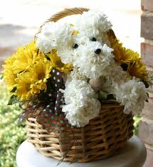dog flower arrangement dog and animal flower arrangements on flower