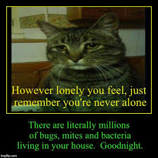 Never Alone Meme - however lonely you feel just remember you re never alone there