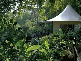 Wall Mural Dense Forests Peel The 40 Best Resorts In Asia Photos Conde Nast Traveler