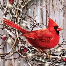 Cardinal Bird Home Decor by Amazon Com Dona Gelsinger Cardinal Songbird Art Wall Decor On