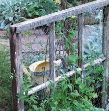 easy pea trellis 12 diy garden trellis plans designs and ideas chicken wire