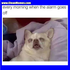 Funny Memes 2016 - alarm goes off clean memes