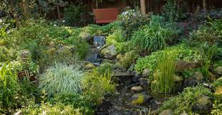 Reno Green Landscaping by Organic Landscaping Reno Nv Chop Chop Landscaping Reno Nv