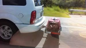 porta cani per auto negli stati uniti il conducente di un veicolo 礙 stato fermato in