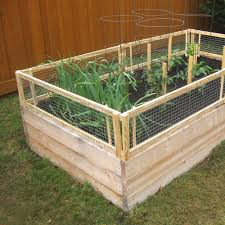 Diy Garden Bed Ideas Diy Raised Bed Removable Pest Gate Vegetable Gardener