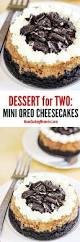 best 20 oreo cheesecake recipes ideas on pinterest no bake oreo