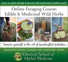 herbalism instructors herbalists herbal educators