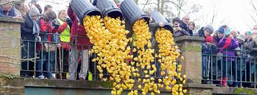 where can i buy duck where can i buy my duck race tickets kenilworth lions club