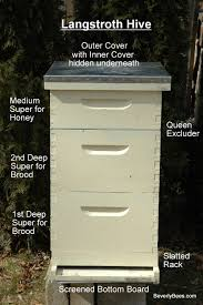 parts of a beehive beginner beekeeper u0027s guide beekeeping