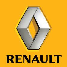 renault captur car touch up paint chipex