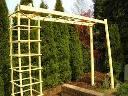 this garden trellis design might work with some tweaking for a