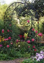 What To Use For Climbing Plants - the 25 best metal trellis ideas on pinterest metal arbor metal