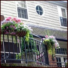 Rail Hanging Planters by Planters For Deck Railings Hayracks Hooks And Lattice