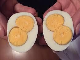 hard boiled egg with two yolks mildlyinteresting