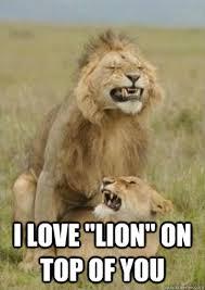 Lion Meme - dirty lion memes quickmeme