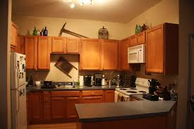 what to put in kitchen cabinets decorating ideas fancy with what
