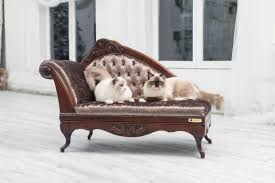 exclusive handcrafted cat sofa from felineva u2013 made to order