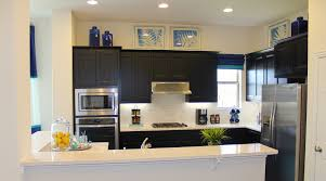 Beech Kitchen Cabinets by Kitchen Photos Burrows Cabinets Central Texas Builder Direct