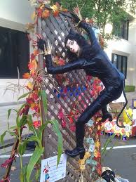 catwoman spirit halloween halloween madness stealing a scarecrow u0027s style u0026 shunning shady