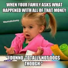 Crazy Dog Lady Meme - 67 best crazy dog lady images on pinterest crazy dog lady cubs