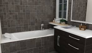 Bathroom Tile Wall Ideas by Bathroom Wall Covering Ideas Catering Stainless Steel Wall Panels