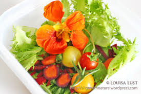 blood type diet align with nature