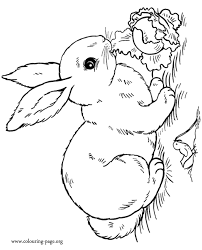 free sleeping beauty colouring pages 7 bunny rabbit coloring