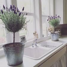 Lavender Decor Https I Pinimg Com 736x 44 Ab Ed 44abed1454f99f7