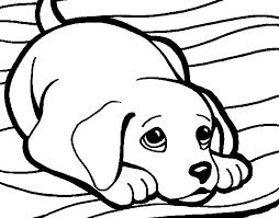 puppy rug coloring coloringcrew