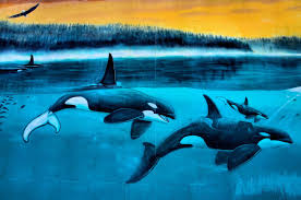 u s murals one encircle photos orcas passage mural by wyland in indianapolis indiana