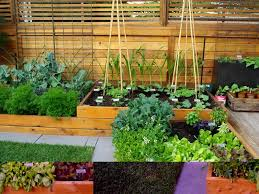 excellent options of small garden ideas that can change your home