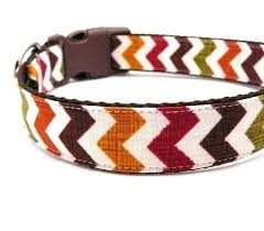 thanksgiving fall chevron collar dressed by cutepetgear