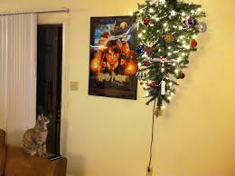 cool design ideas keep cat out of christmas tree modern life kids