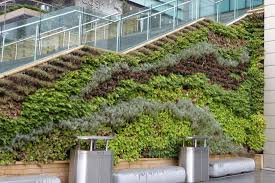 green walls green roofs green rooms green infrastructure