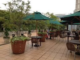 Shady Backyard Ideas Pvblik Com Patio Plants Decor