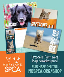 calendars for sale photo calendar sale dayspring 5 flash sale on perpetual calendars