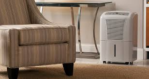 Built In Dehumidifiers For Basements by Dehumidifiers Frequently Asked Questions Sylvane