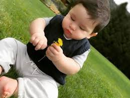 pic taimur ali khan is at his cutest best playing with garden