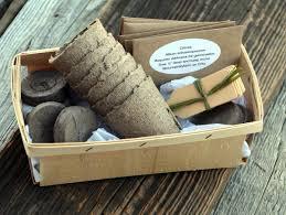 herb seed kit herb garden kit garden gift set gift for gardener