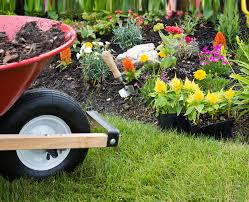 Landscaping by Maple Leaf Lawn Care Marietta Ga Call 770 794 7444 For Expert