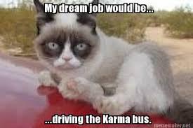Funny Grumpy Cat Meme - kitty karma grumpy cat quotes grumpycat meme humor 13