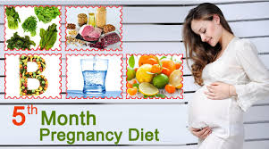 5th month of pregnancy diet which foods to eat u0026 avoid