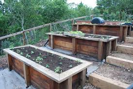 Making A Vegetable Garden Box by Organic Garden Consulting And Design In The San Francisco Bay Area