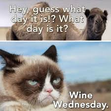 Happy Hump Day Memes - 15 wednesday memes funny hump day memes with quotes 2018 funny memes
