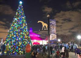 holiday magic festival of lights 2017 brookfield zoo makes the season bright with holiday magic