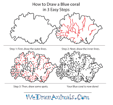 how to draw a blue coral