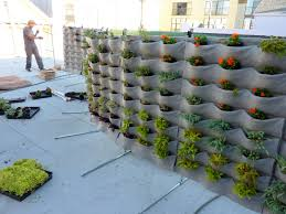 Wall Garden Kits by Making A Living Wall With Plants How To Make Vertical Succulent