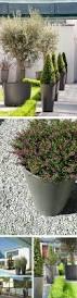 Planter Pot Alto Tall Round Tapered Outdoor Planter Pot Nova68 Modern Design